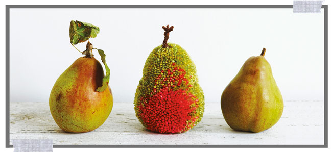 Pompomania Pears Project